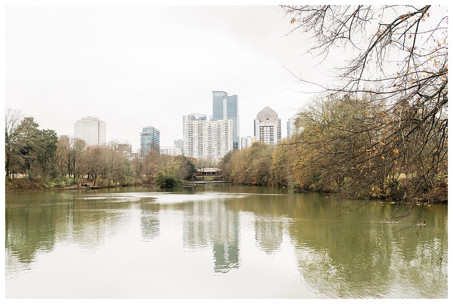 engagement proposal at piedmont park atlanta
